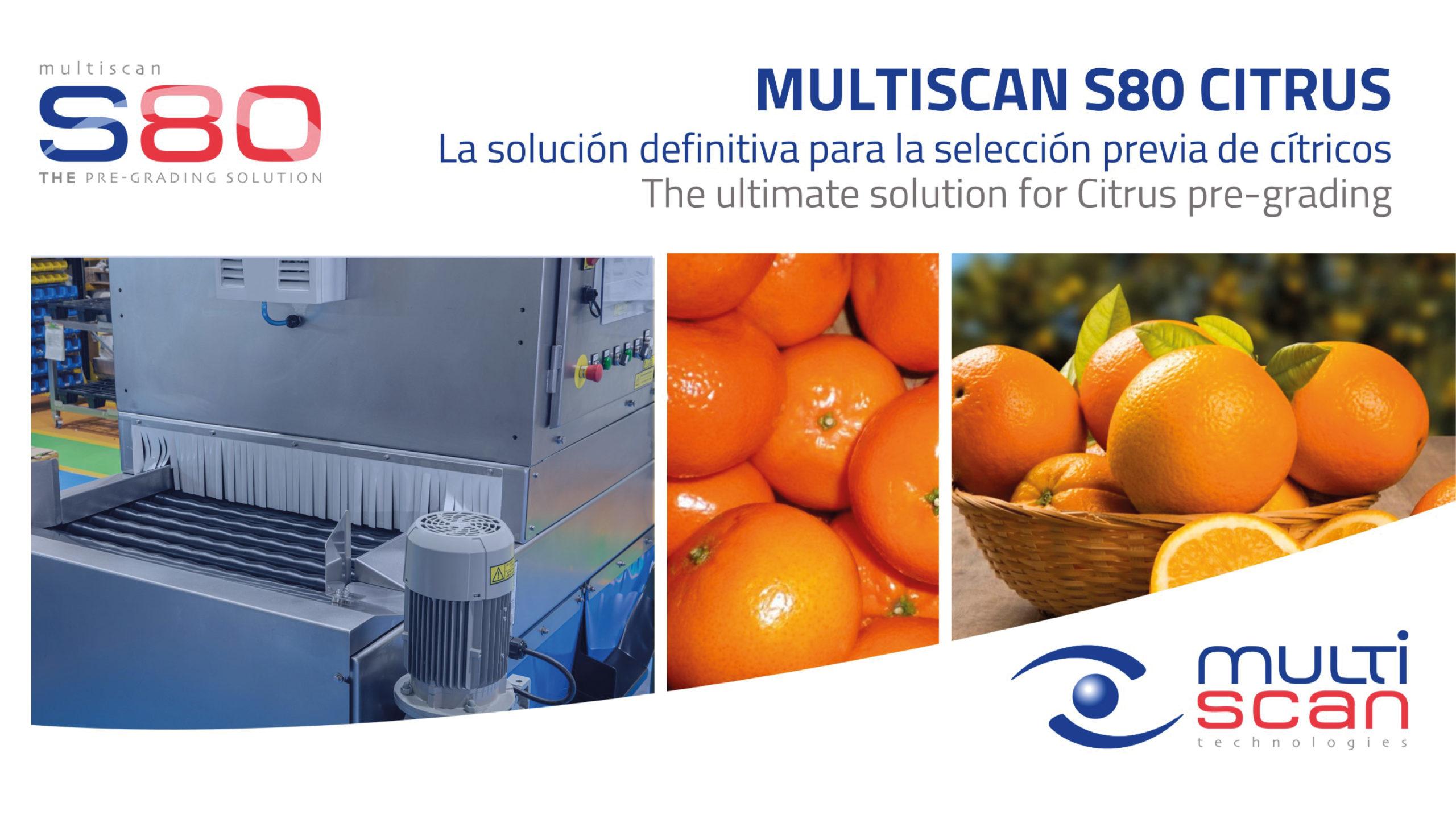 Multiscan S80 Citrus