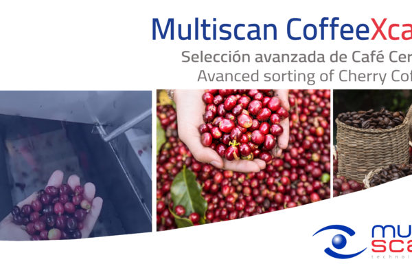 Multiscan CoffeeXcan, solución avanzada para la selección de café cereza