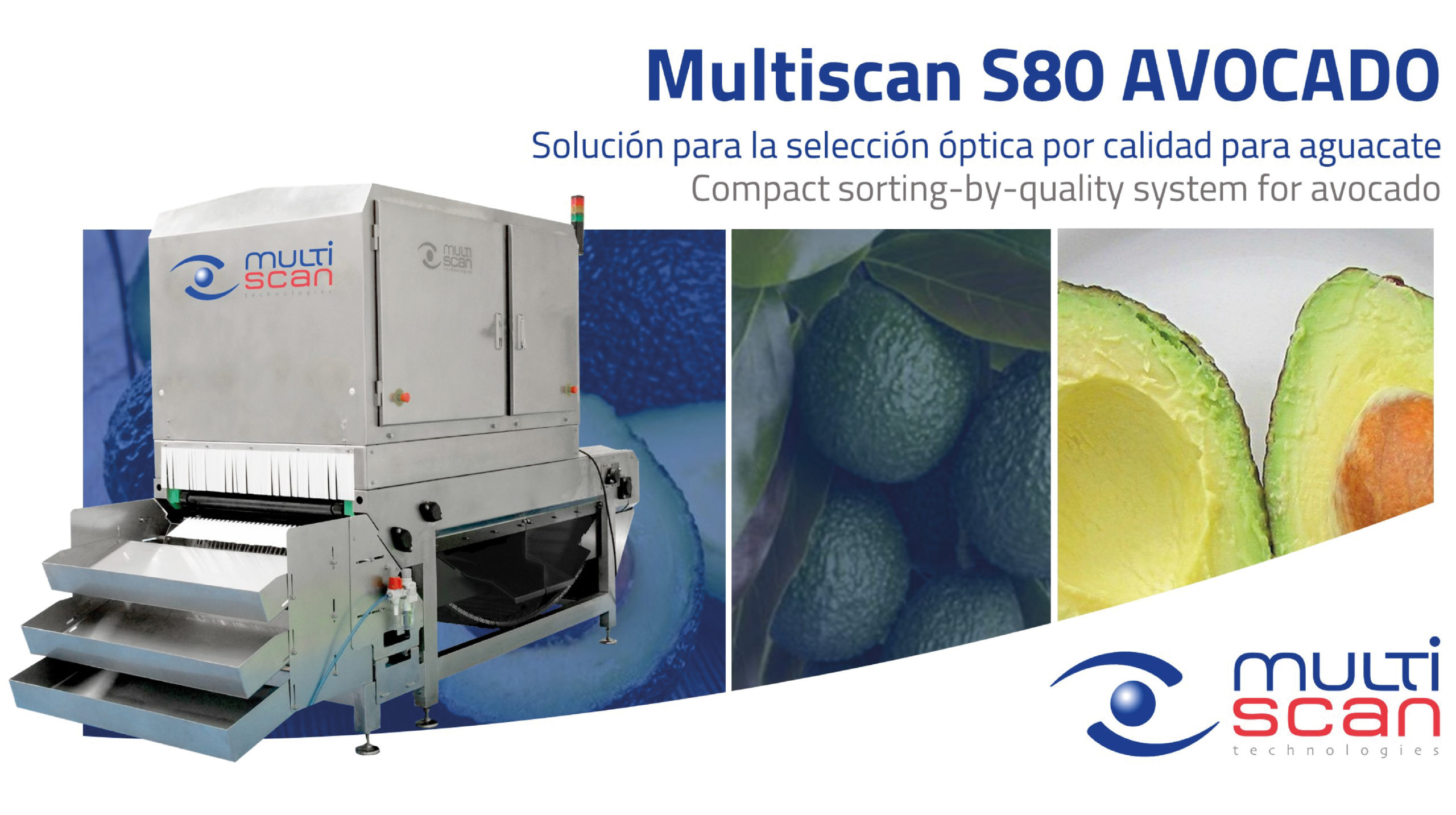 Multiscan S80 Avocado: compact sorting-by-quality system for avocado